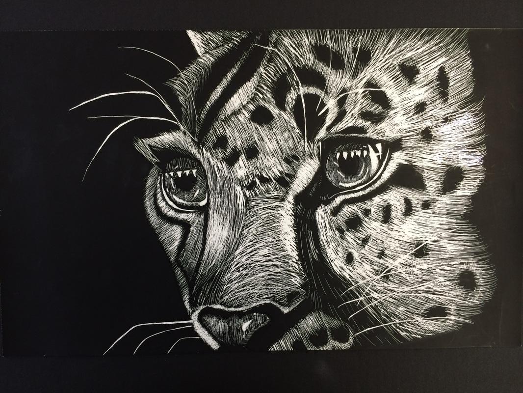 Scratch Board Animal Portraits